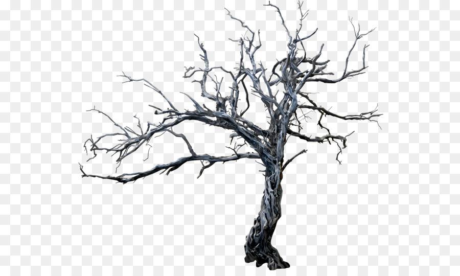 Descarga gratuita de árbol, Rama, Tronco Imágen de Png