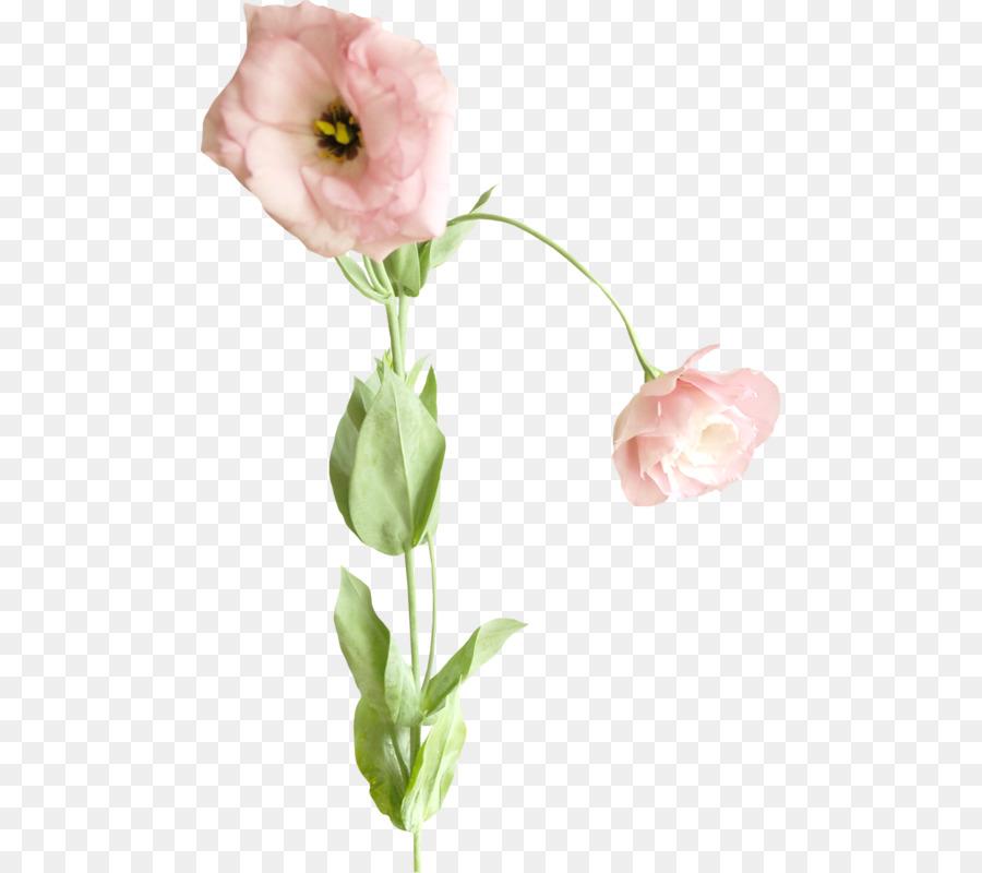 Descarga gratuita de Diseño Floral, Pintura, Bakú La Fiesta De Las Flores imágenes PNG