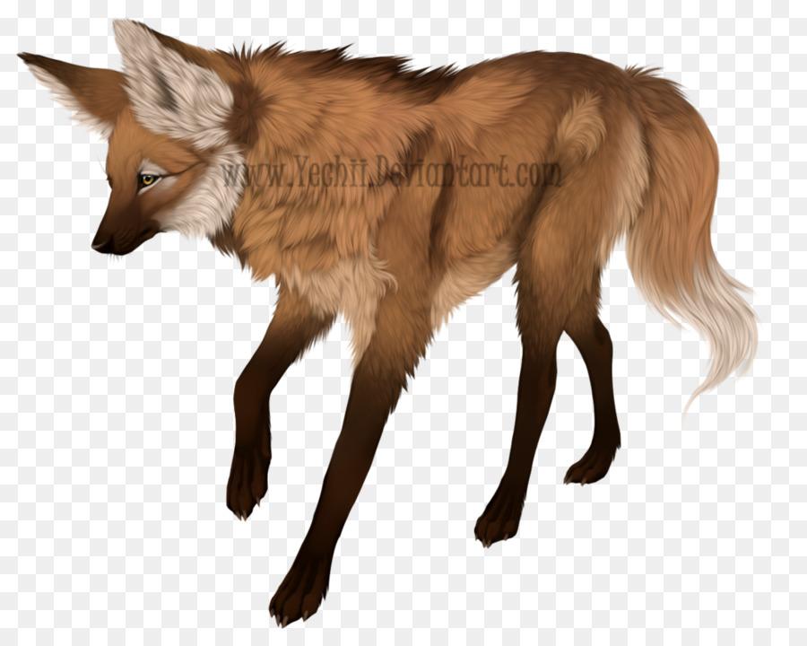 Descarga gratuita de Zorro Rojo, Lobo Gris, Coyote imágenes PNG