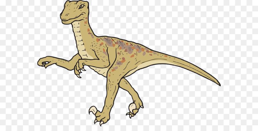 Descarga gratuita de Velociraptor, Tyrannosaurus, Dinosaurio Imágen de Png