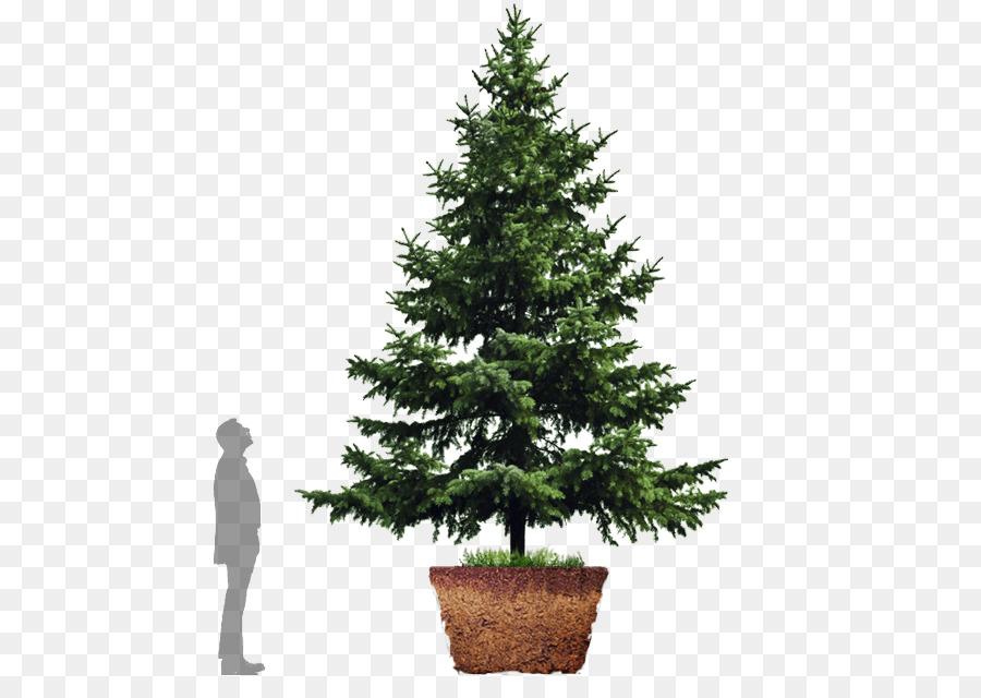 Descarga gratuita de árbol De Navidad, árbol, árbol De Navidad Artificial imágenes PNG