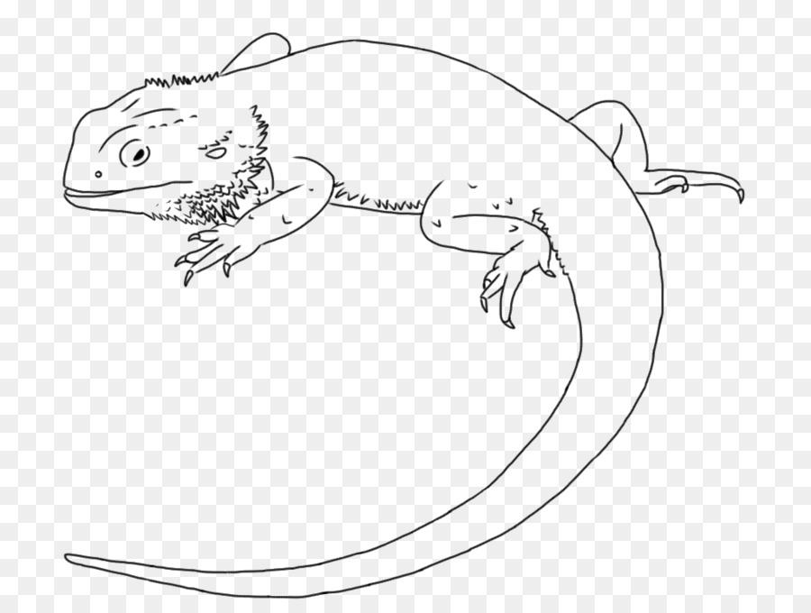 Lagarto Dibujo Central Dragón Barbudo de la Línea de arte de Clip ...