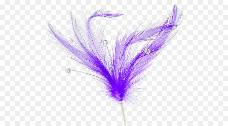 Descarga gratuita de Pluma, Púrpura, Violeta Imágen de Png