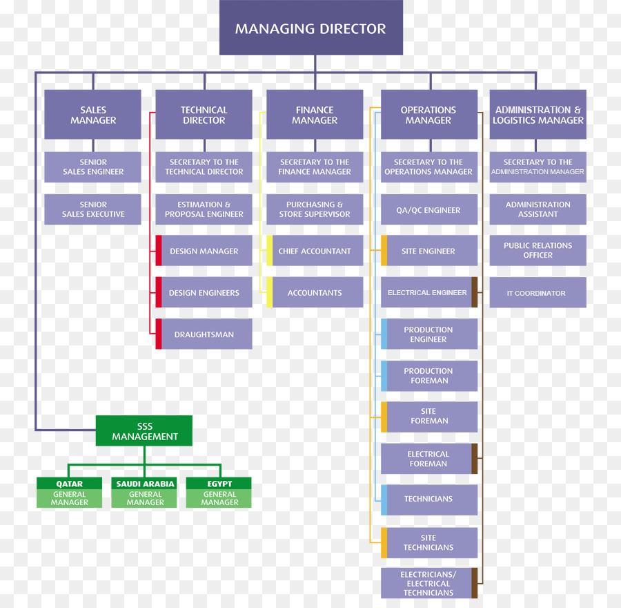 Organización Estructura De La Organización La Organización