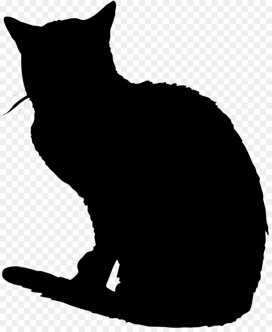 Descarga gratuita de Gato Negro, Gato Doméstico De Pelo Corto, Bigotes Imágen de Png