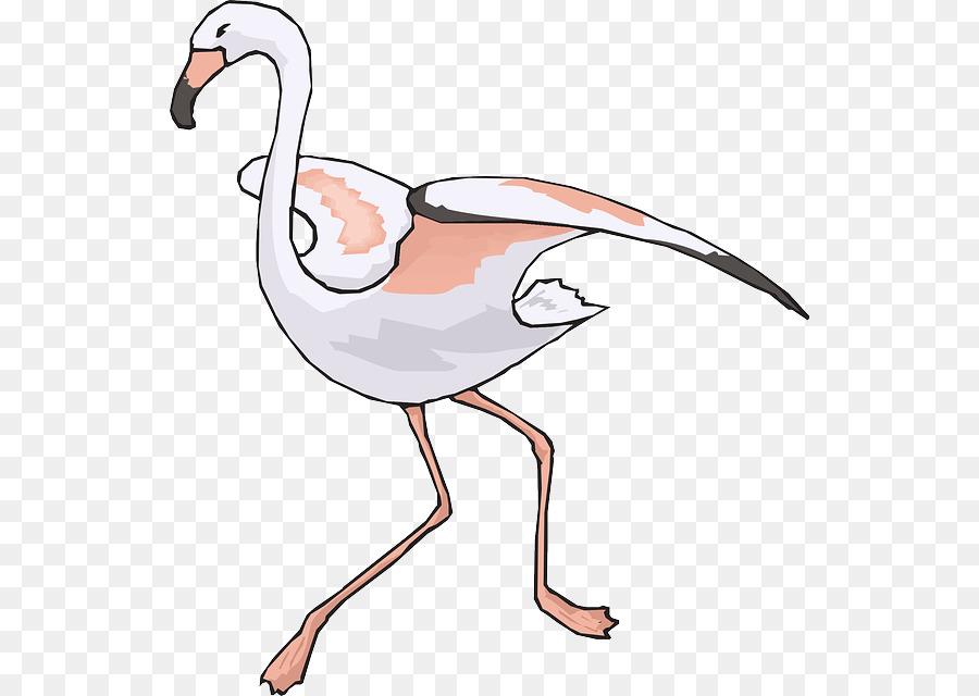 Descarga gratuita de Flamingo, Pico, Animación Imágen de Png