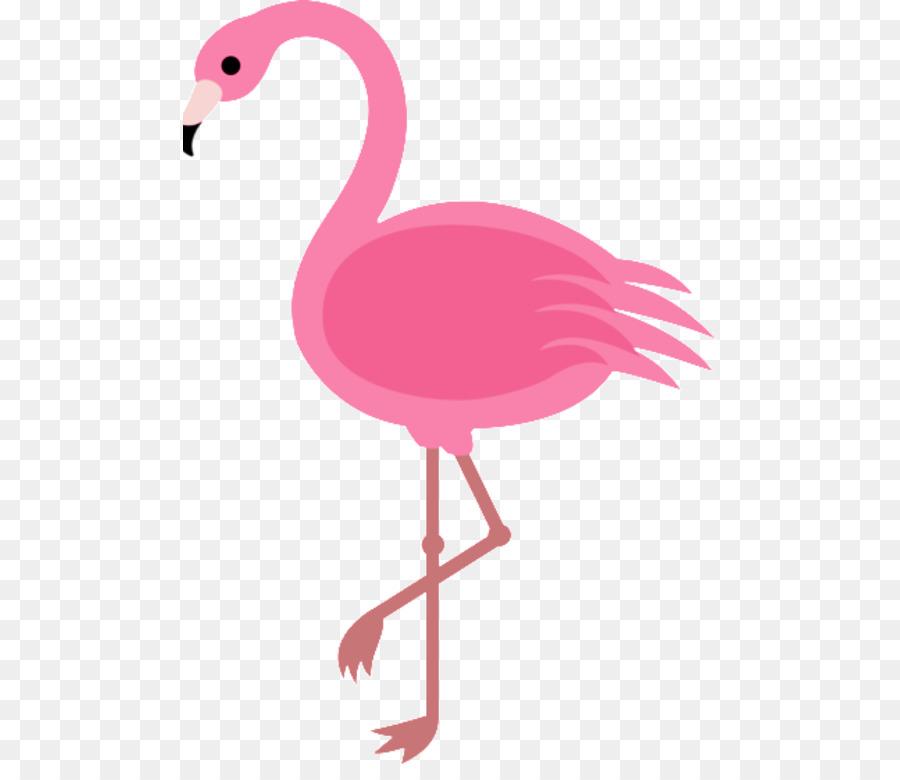 Descarga gratuita de De Dibujos Animados, Dibujo, Flamingo Imágen de Png