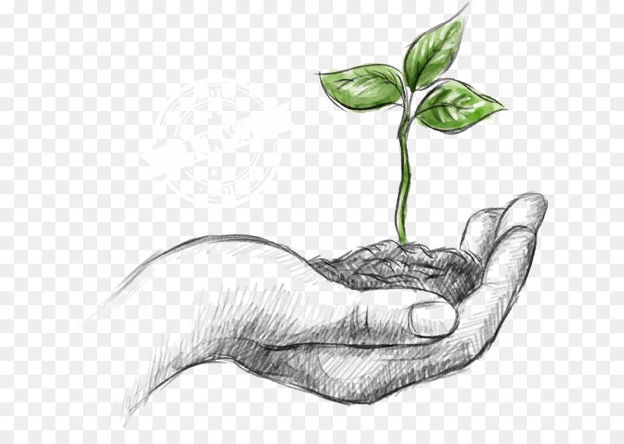 Descarga gratuita de Entorno Natural, De Protección Ambiental, La Sostenibilidad imágenes PNG