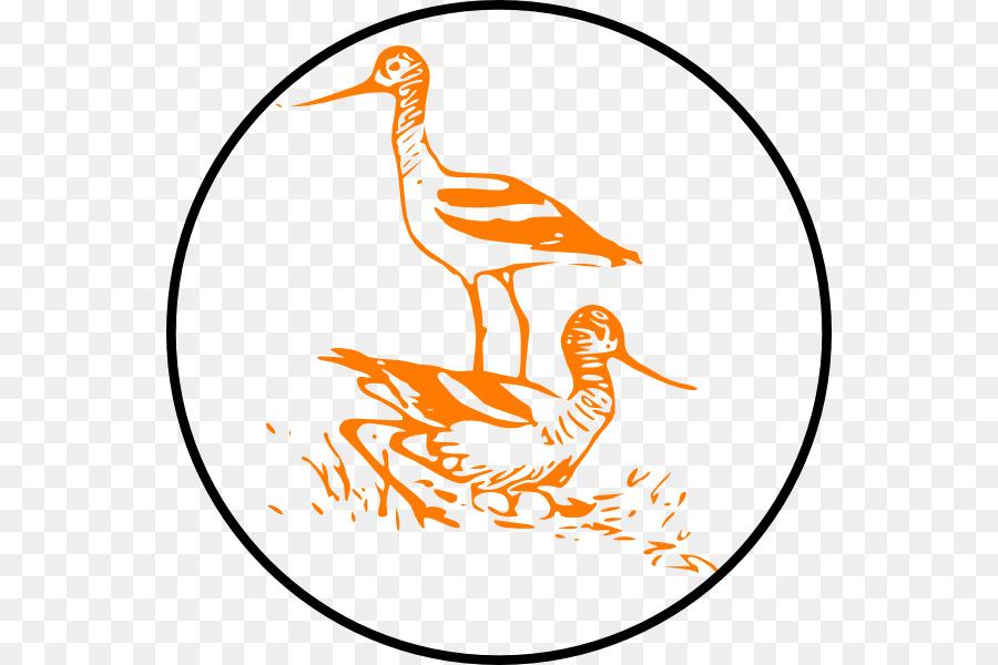 Descarga gratuita de Cygnini, Aves, Arte De Línea Imágen de Png