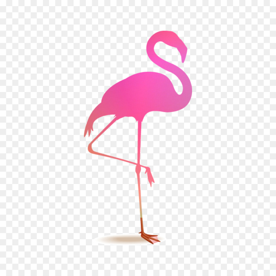 Descarga gratuita de Flamingo, Royaltyfree, Fotolia Imágen de Png