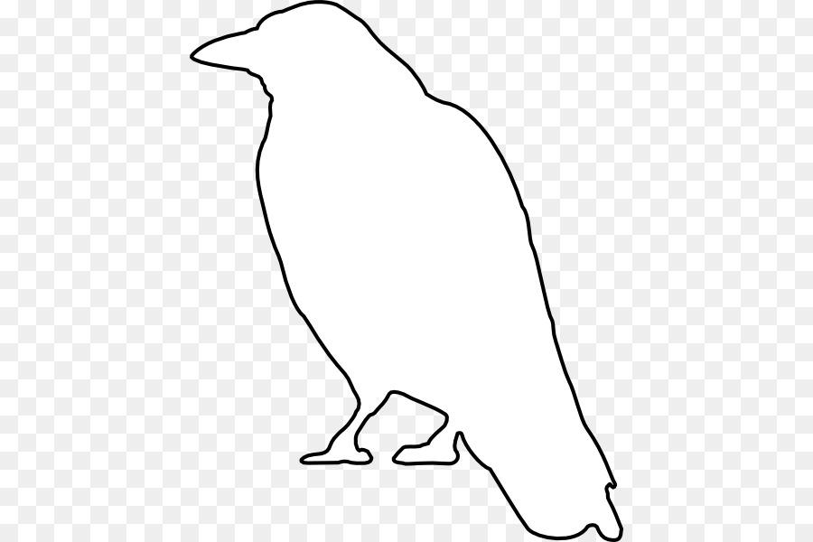 Descarga gratuita de Común Raven, Dibujo, Esquema imágenes PNG