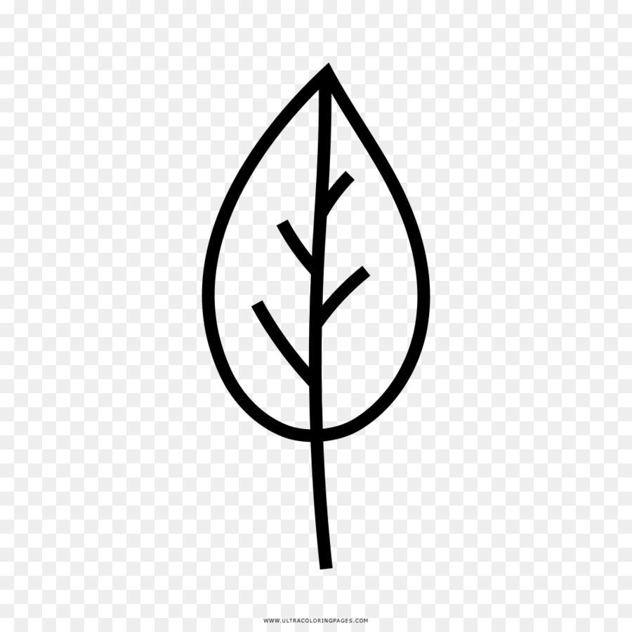 Hoja árbol Dibujo Imagen Png Imagen Transparente