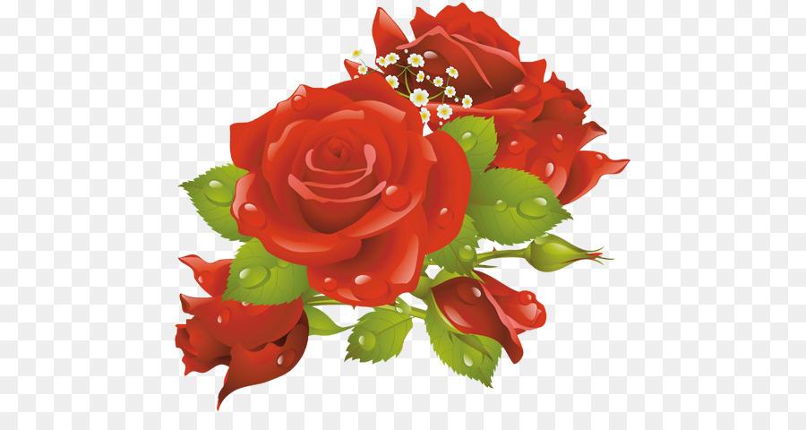 Descarga gratuita de Marcos De Imagen, Flor, Las Rosas De Jardín Imágen de Png