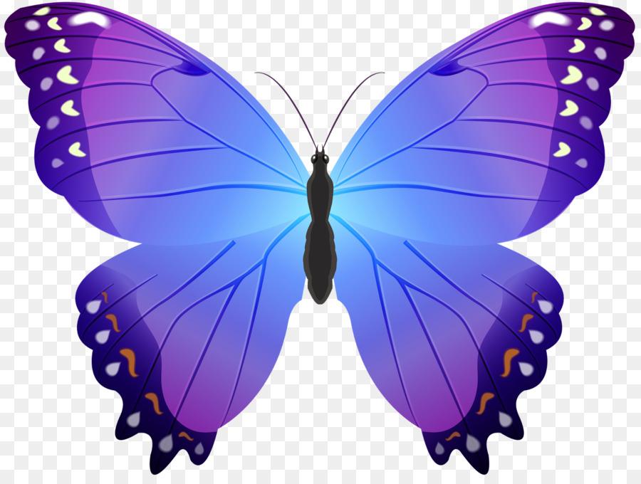 Descarga gratuita de Mariposa, Color, Violeta Imágen de Png