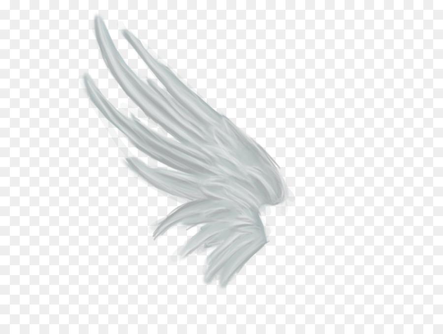 Descarga gratuita de La Representación, Ala, ángel Blanca imágenes PNG