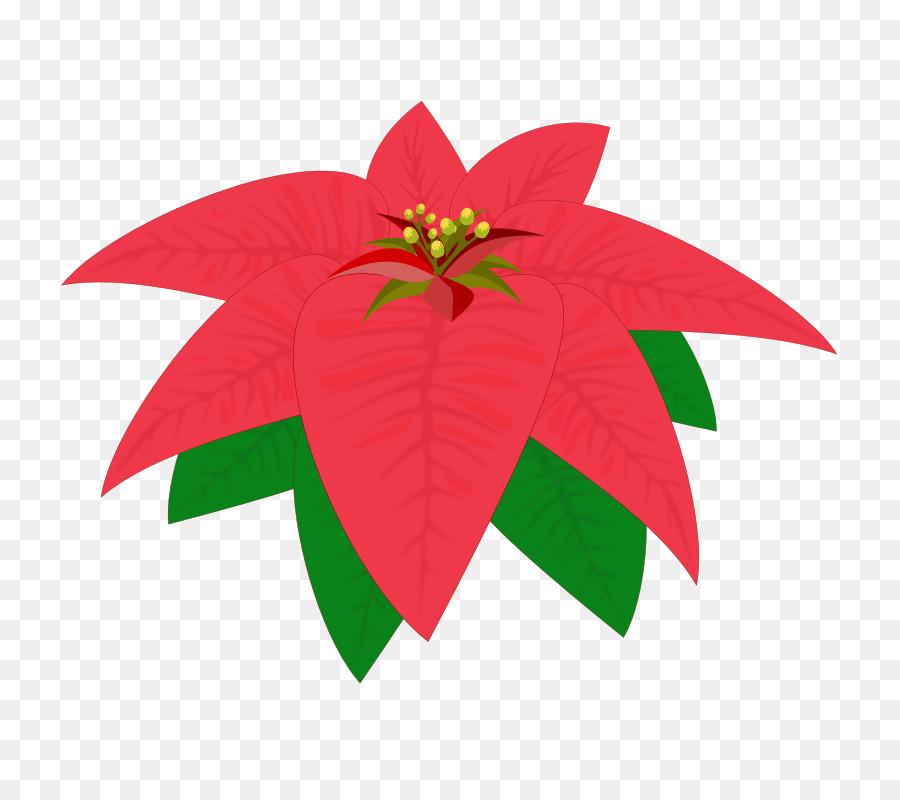 Descarga gratuita de Flor, Dibujo, Metarchivo De Windows Imágen de Png