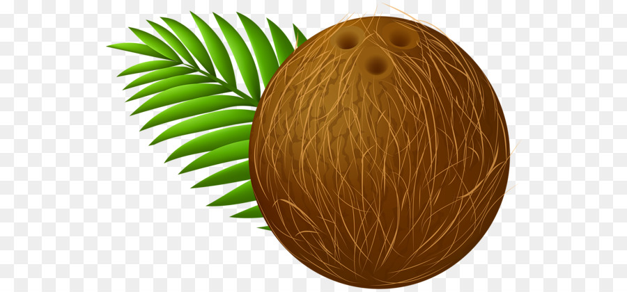 Descarga gratuita de Coco, La Leche De Coco, El Aceite De Coco Imágen de Png