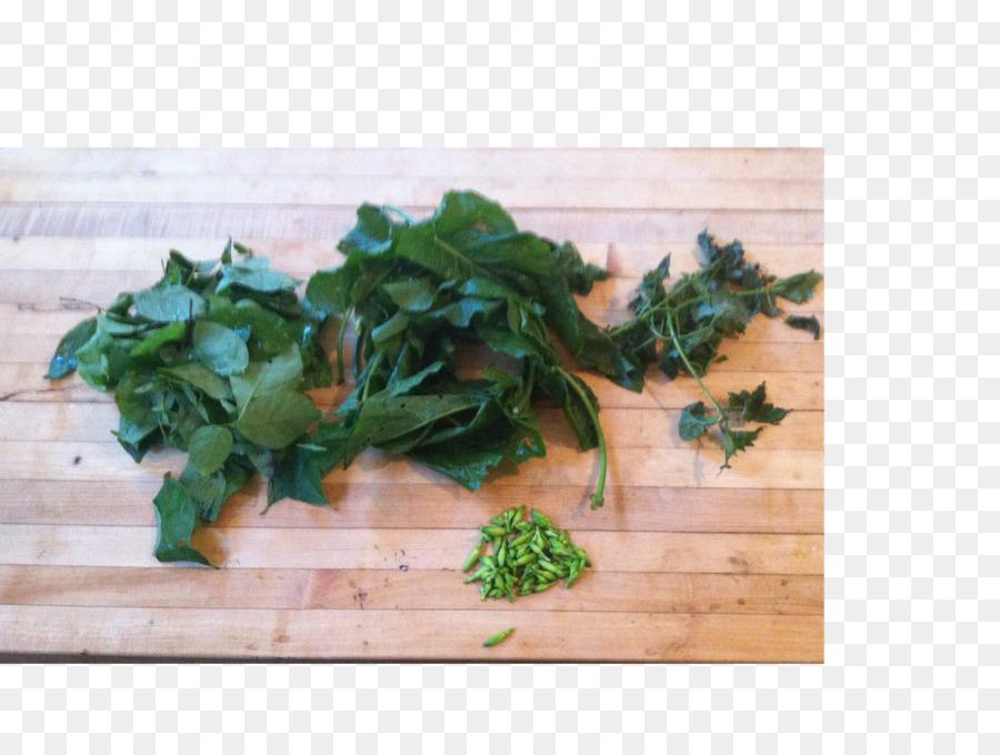 Descarga gratuita de Perejil, De Verduras De Primavera, Receta imágenes PNG