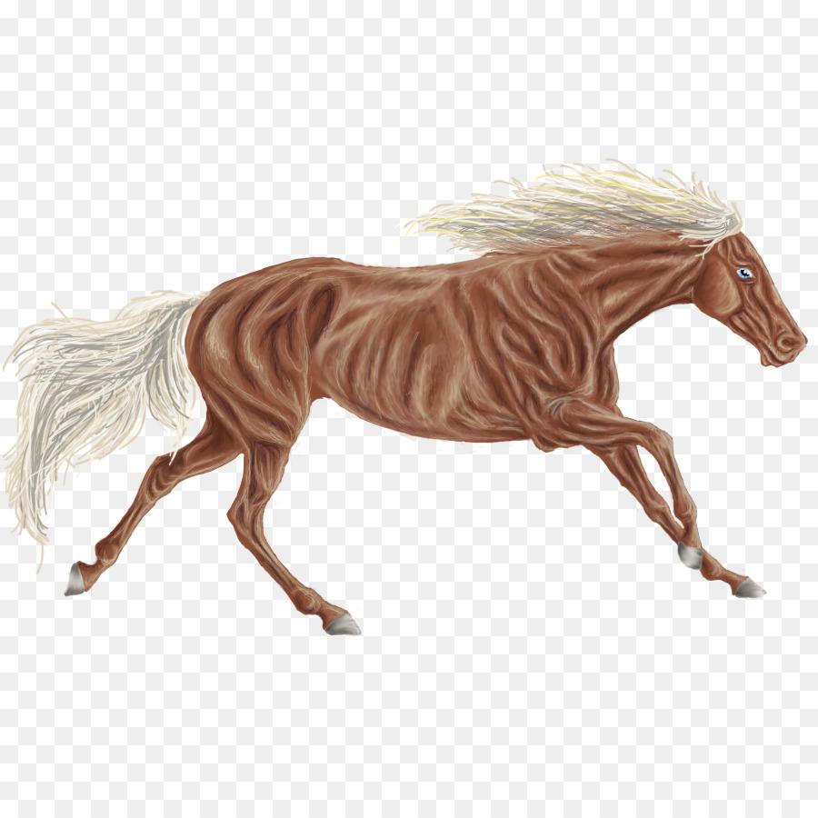 Descarga gratuita de Mane, Mustang, Pony Imágen de Png