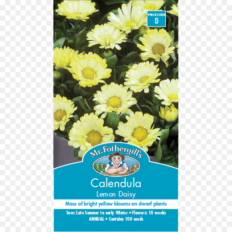 Descarga gratuita de Crisantemo, Caléndula Officinalis, Limón Imágen de Png