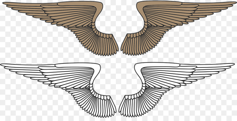 Descarga gratuita de Ala, águila, Pájaro imágenes PNG