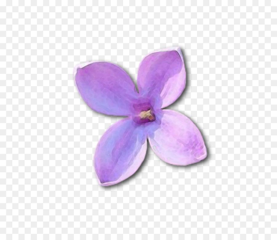 Descarga gratuita de Lila, Violeta, Bakú La Fiesta De Las Flores imágenes PNG