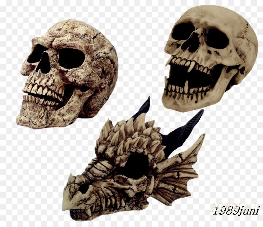 Descarga gratuita de Cráneo, Esqueleto, La Risa Imágen de Png