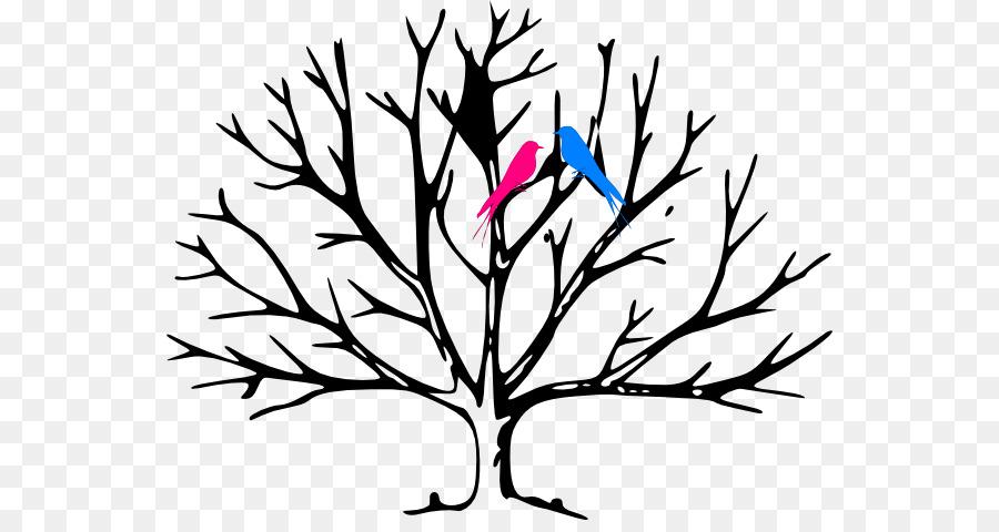 Libro Para Colorear árbol Hoja Imagen Png Imagen
