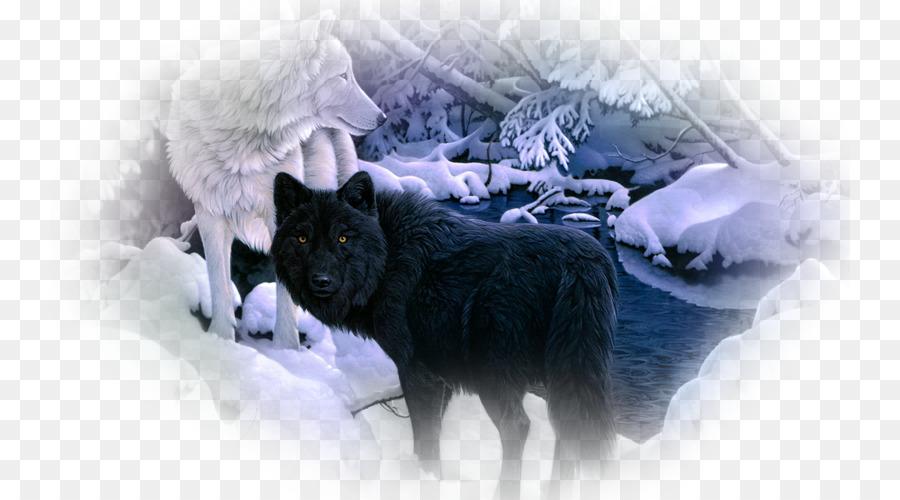 Descarga gratuita de Husky Siberiano, El Lobo ártico, Lobo Negro imágenes PNG