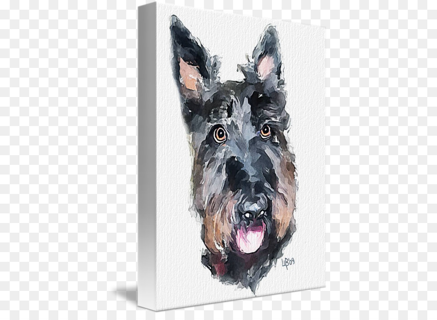 Descarga gratuita de Schnauzer Miniatura, Scottish Terrier, Raza De Perro imágenes PNG