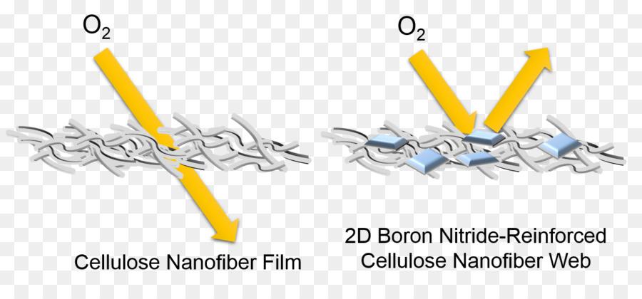 El Nitruro De Boro Nanosheet Nanofibras La Celulosa Imagen