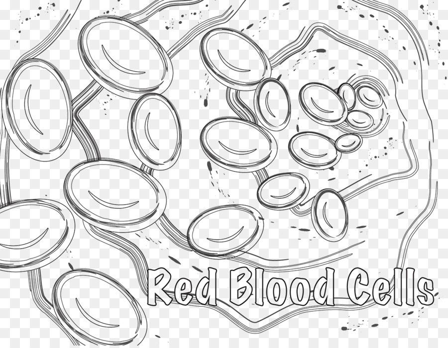 Células Rojas De La Sangre Celular Libro Para Colorear