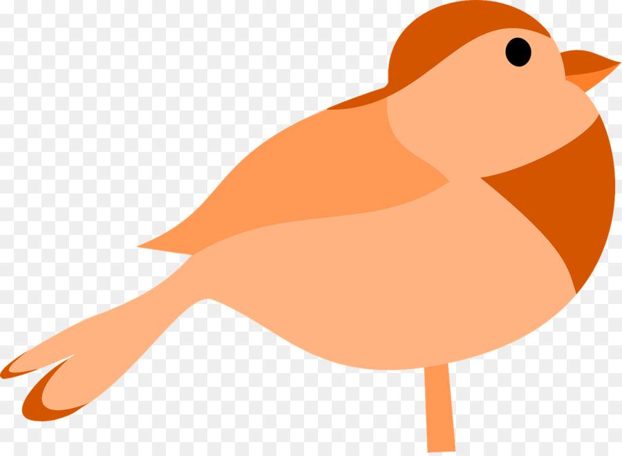 Descarga gratuita de Aves, Descargar, Arte Imágen de Png