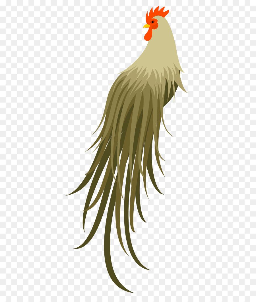 Descarga gratuita de Gallo, Pollo, Aves imágenes PNG