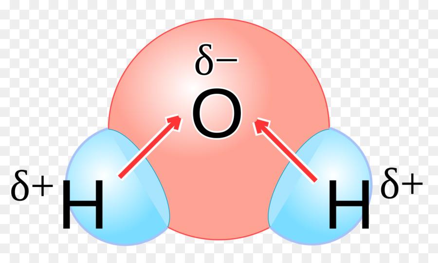 Descarga gratuita de Química De La Polaridad, Agua, La Molécula De Imágen de Png