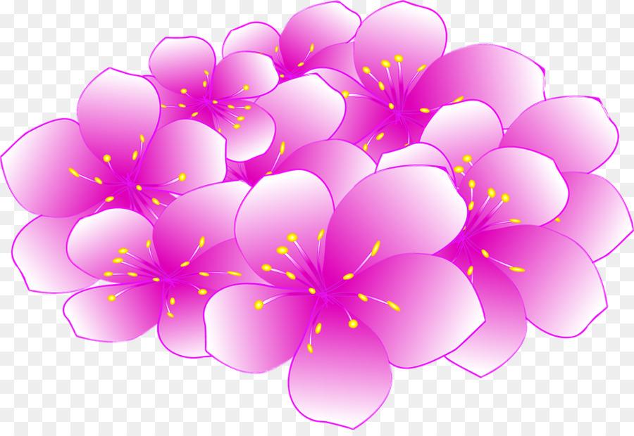 Descarga gratuita de De Los Cerezos En Flor, Fondo De Escritorio, Flor imágenes PNG