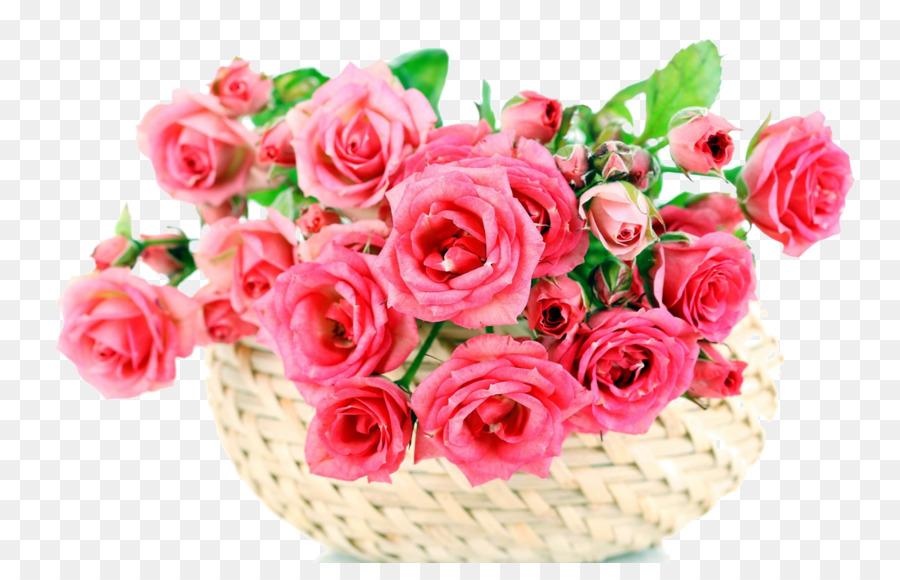 Descarga gratuita de Las Rosas De Jardín, Flor, Rosa imágenes PNG