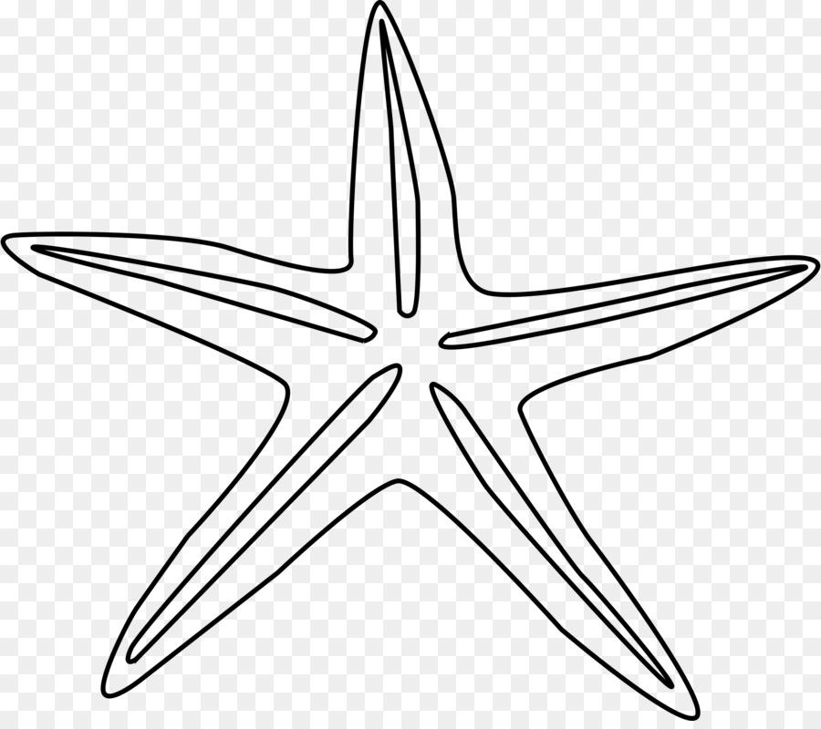 Estrella De Mar Libro Para Colorear Dibujo Imagen Png Imagen