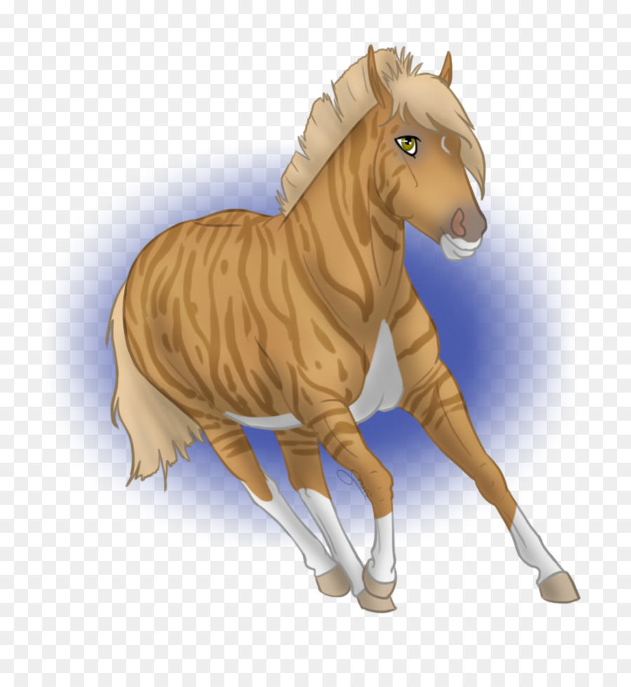 Descarga gratuita de Mustang, Semental, Quagga imágenes PNG