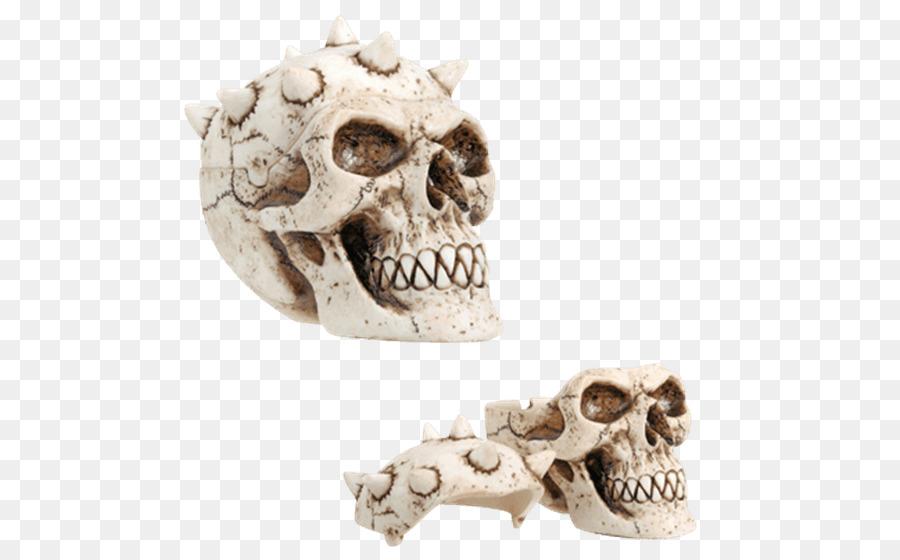 Descarga gratuita de Esqueleto, Coleccionable, Contenedor Imágen de Png