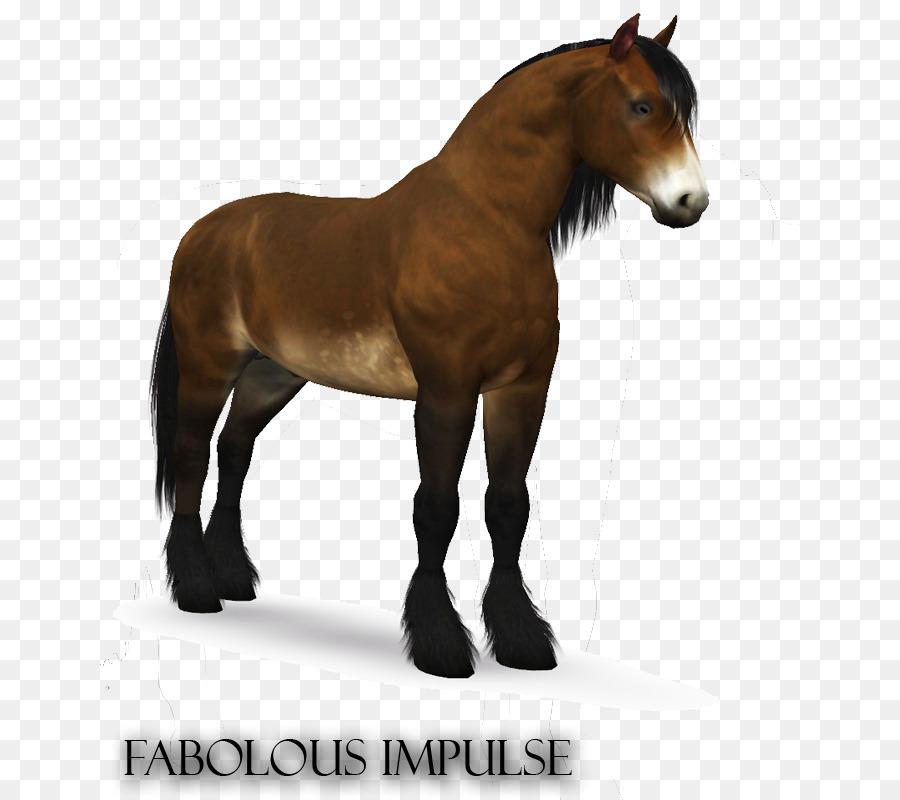 Descarga gratuita de Semental, Potro, Mustang imágenes PNG