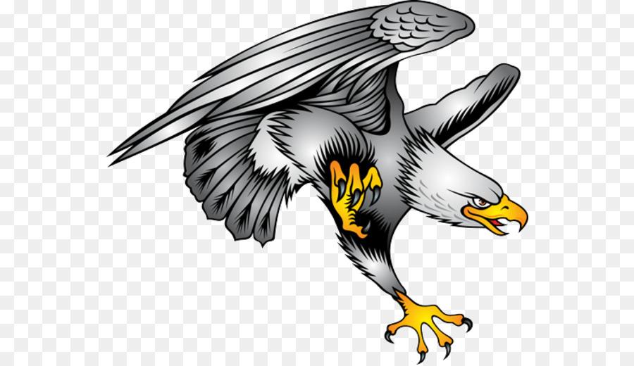 Descarga gratuita de águila Calva, águila, Descargar Imágen de Png