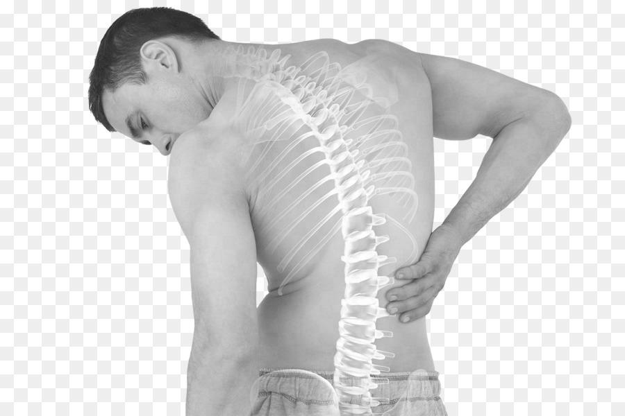 Espalda baja intestinal dolor