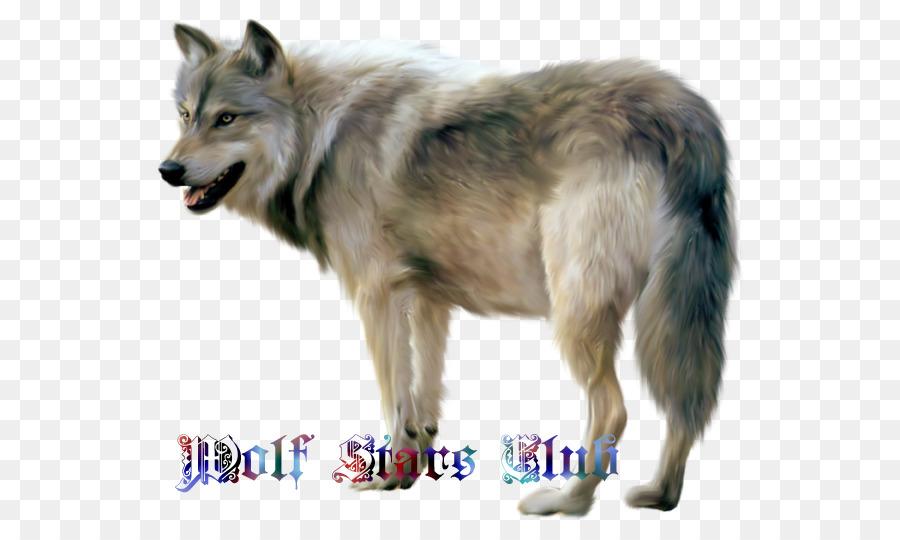 Descarga gratuita de Perro Lobo Checoslovaco, Utonagan, Iconos De Equipo imágenes PNG
