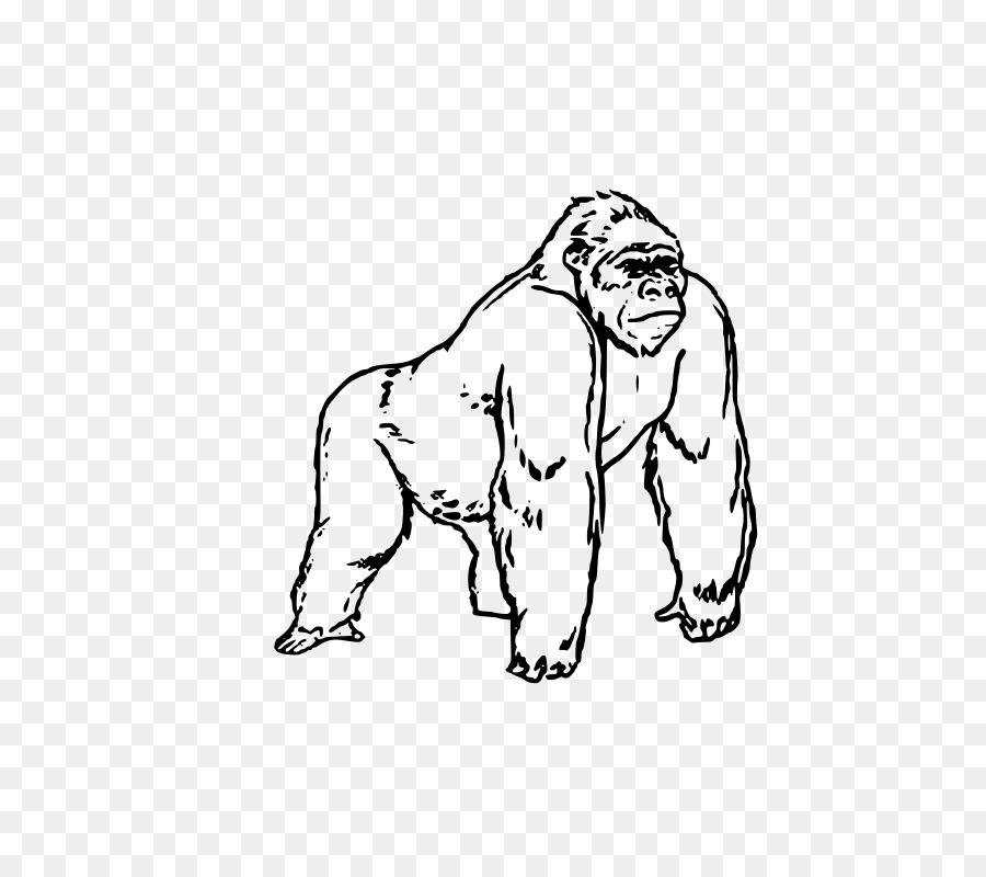 King Kong Donkey Kong Libro Para Colorear Imagen Png Imagen