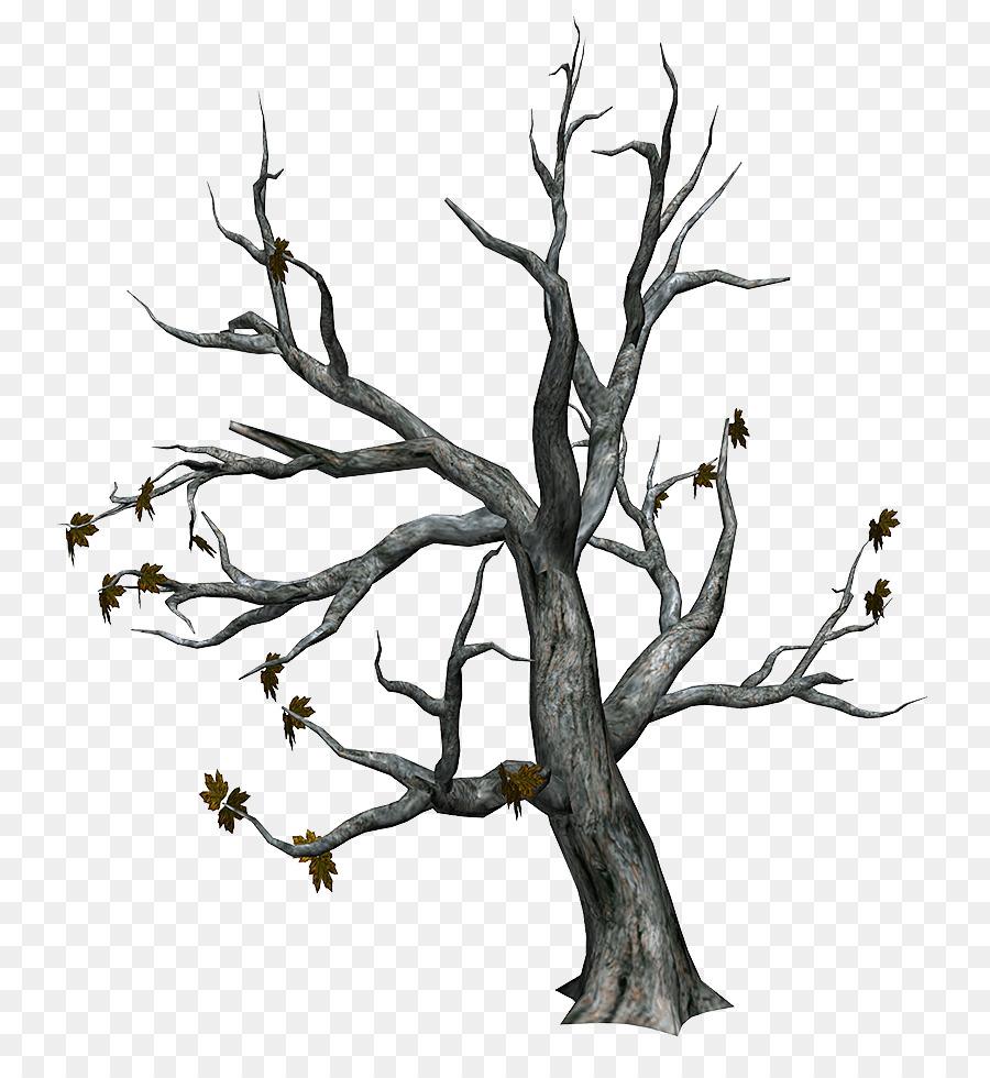 Descarga gratuita de árbol, Descargar, Tronco Imágen de Png