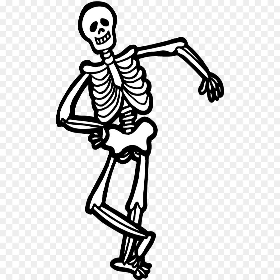 Descarga gratuita de Esqueleto Humano, Dibujo, Esqueleto Imágen de Png