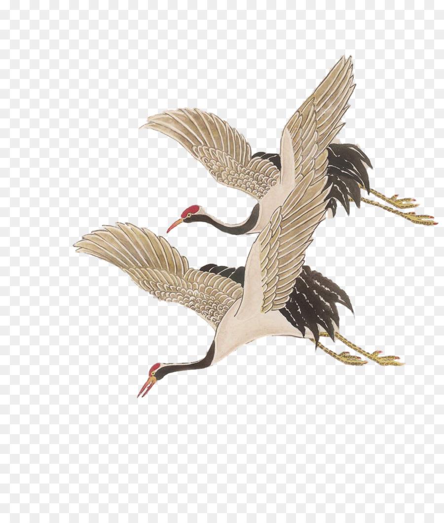 Descarga gratuita de Grúa, Aves, Redcrowned De La Grúa Imágen de Png