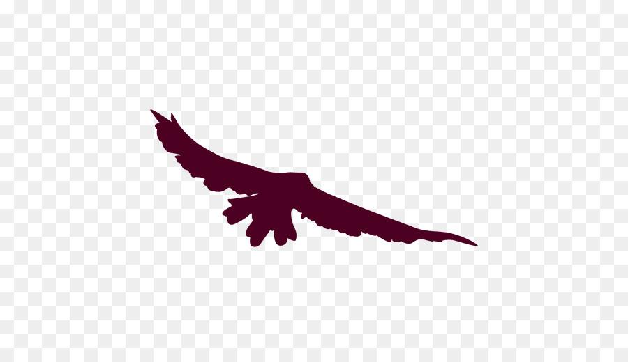 Descarga gratuita de águila, Aves, Vuelo Imágen de Png