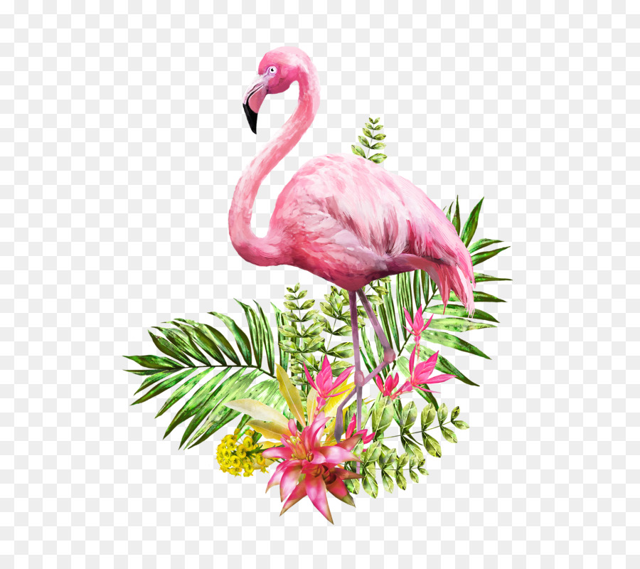 Descarga gratuita de Flamingo, Pintura A La Acuarela, Cartel Imágen de Png